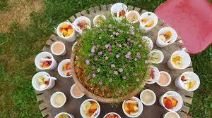 rdv cuisine special rdv cuisine design iqdiplom com