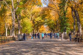 Fall Autumn by Best Fall Foliage In New York From Central Park To The Catskills