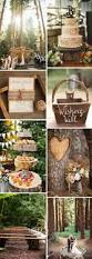 cheap hunting cabin ideas best 25 cabin wedding ideas on pinterest wedding invitations