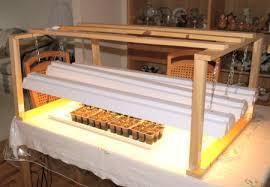 shop light for growing plants growing seedlings in a basement