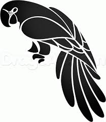 how to draw a tribal parrot step 8 cris pinterest stenciling