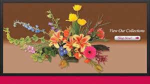 burlington florist kathy company florist burlington vermont