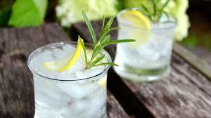 rosemary gin fizz today com