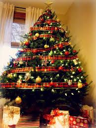 real christmas tree christmas the hyper house