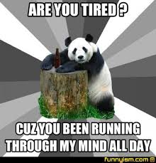 Running Bear Meme - are you tired cuz you been running through my mind all day