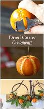 dried citrus ornaments natural holiday beauty christmas tree