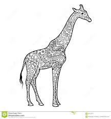 giraffe coloring book for adults vector stock vector image 68122707