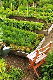Growing Your Own Vegetable Garden by 366 Best Vegetable Gardens Potager Images On Pinterest Veggie