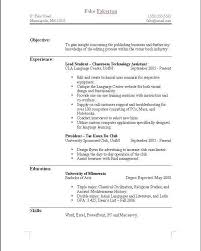 What Should Be My Resume Title What Is A Resume Name Resume Ideas