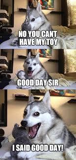 Good Day Sir Meme - bad pun dog meme imgflip
