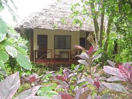 baraka aquarium bungalows nungwi tanzania booking com
