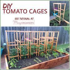 garden cage squirrel proof garden colin purrington 7 ways to