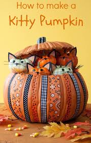 halloween background cat and pumpkin 36 easy halloween pumpkin ideas cat lovers cat and pumpkin ideas