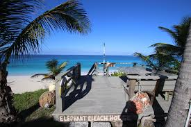 elephant beach house vacation rental rustic u0026 secluded on the