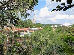 mouseplanet walt disney world resort update for september 29