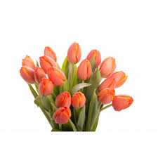 Tulip Bouquets Orange Tulip Bouquet Tulip Bouquets Gifts Flower Muse