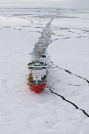 what happens when oil spills in the arctic