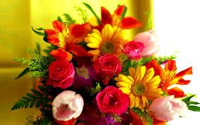 flowers board by sukrut imagenes