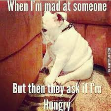 Im Mad At You Meme - when i m mad at someone but then they ask if i m hungry hungry