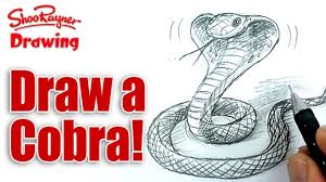 how to draw a cobra snake spoken tutorial youtube