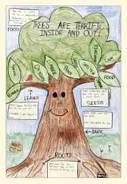 make a importance of trees poster arbor day poster ideas