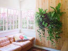 indoor green wall with simple attached to a wooden wall with vase