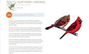 bird songs bible u0027 tweets the old fashioned way npr