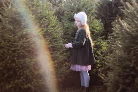 the christmas tree farm gingerlillytea