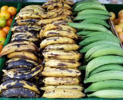 cuisiner banane plantain à découvrir la banane plantain à cuire naturopathe montréal