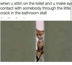 Bathroom Stall Meme - when u sittin on the toilet and u make eye contact with somebody