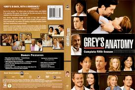 Hit The Floor Next Season - grey u0027s anatomy u0027 season 5 episode guide