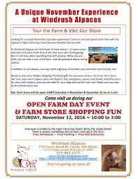 Questions About Thanksgiving Alpaca A Taste Of Life At Windrush Alpacas
