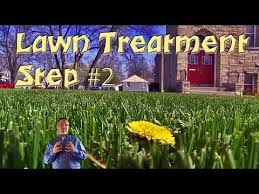 lawn care programs for do it yourself lawn treatment program step 2 3 way application