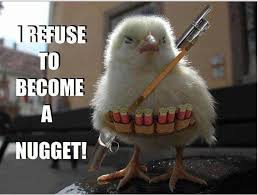 Chicken Meme Jokes - funny political cartoons jokes quotes pictures memes pics images