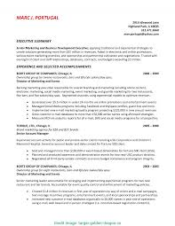 incident summary report template executive summary exle incident report template s the ison