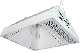 315w cmh grow light amazon com hydroplanettm 315w cmh system complete fixture grow