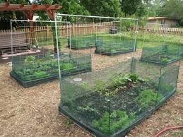 Vegetable Garden Netting Frame by Stylist Design Ideas Netting For Garden Lovely Keep Birds Away