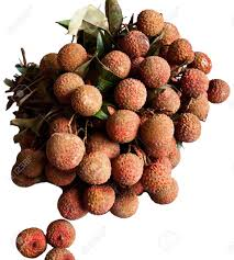 fruit similar to lychee the lychee litchi chinensis is the sole member of the genus