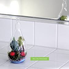 hanging glass globes geometric terrarium containers glass orbs