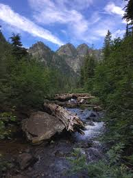 Cabinet Mountains Wilderness Montana Another Walk In The Park