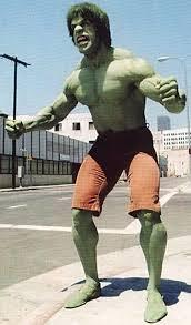 incredible hulk lou ferrigno bill bixby tv series profile
