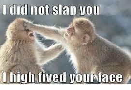 Slap Meme - did not slap you meme on me me