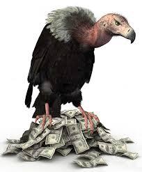 Seeking Vulture Vulture Funds