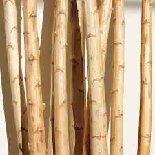 Decorative Bamboo Sticks Yucca Poles 5 Up To 12 Feet