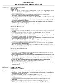 sle resume for digital journalism conferences 2016 digital sales resume sles velvet jobs