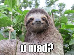 Angry Sloth Meme - u mad stoned sloth quickmeme