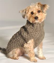 grey gray cable knit sweaters sweaters for dogs