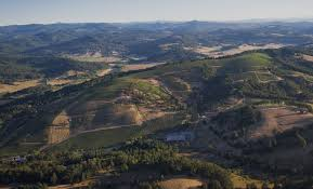 Oregon Wine Country Map by The Mcminnville Foothills Winegrowers Association