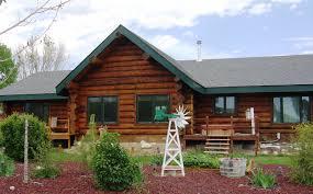 log and wood siding care