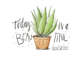 cute plant cute plant illustration watercolor with lettering quote download
